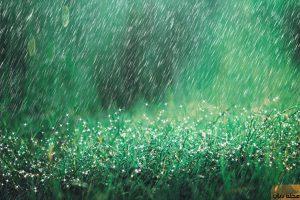 تفسير حلم المطر